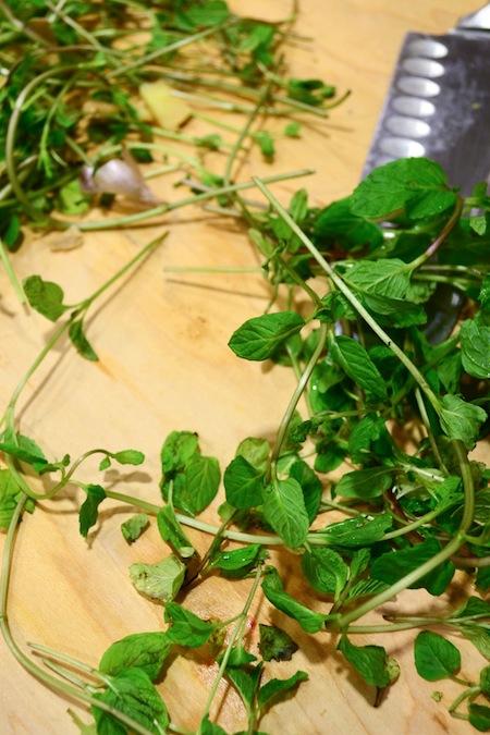 Ayurvedic Mint Rice Recipe