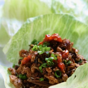 PF Chang's Lettuce Wraps on https://fearlessfresh.com