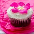 The Allergen-Free Baker's Handbook + Chocolate Cupcake Recipe