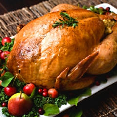 Roasting the Bird - How to Roast A Turkey