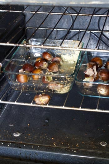 Roasted Chestnuts on