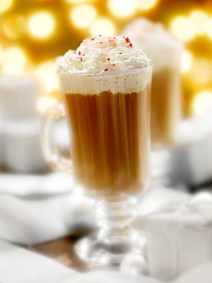 Peppermint Hot Chocolate Recipe on http://www.theculinarylife.com