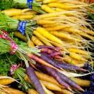 Keeping Carrots Fresher for Longer