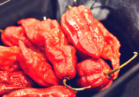 Ghost Pepper on http://www.theculinarylife.com