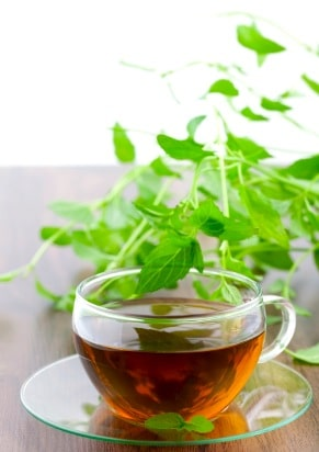 How to Make Mint Tea on http://www.theculinarylife.com
