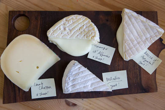 Two Goats + Two Sheep = One Fabulous New Years Cheese Plate on http://www.theculinarylife.com