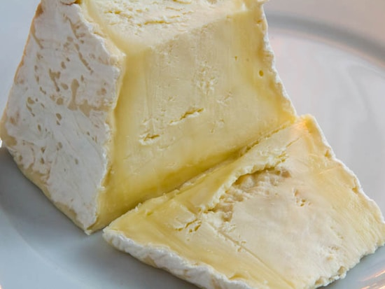 Andante Metronome Cheese