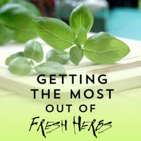 Your Guide to Getting the Most Out of Fresh Herbs